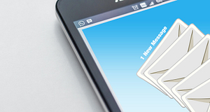 Email Marketing and the Forestry Industry